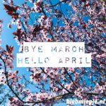 Wrap-up maart: #boekperweek & #hebbanchallenge